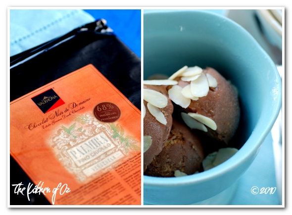 Chocolate-Coconut Ice Cream